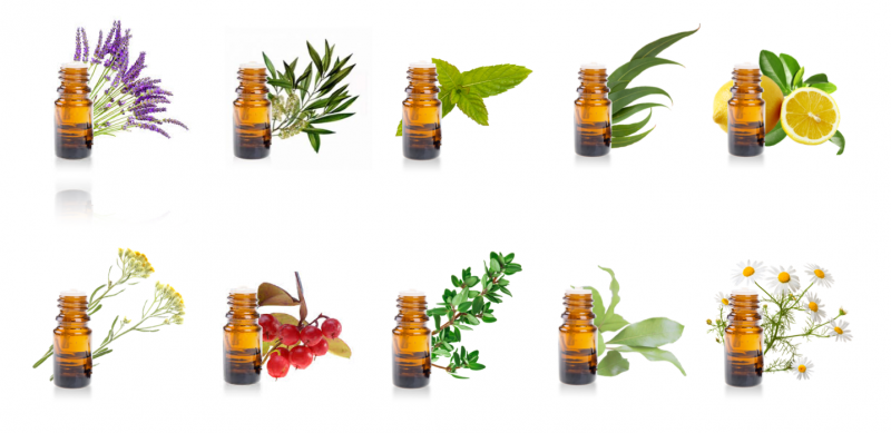 Mes 10 huiles essentielles indispensables