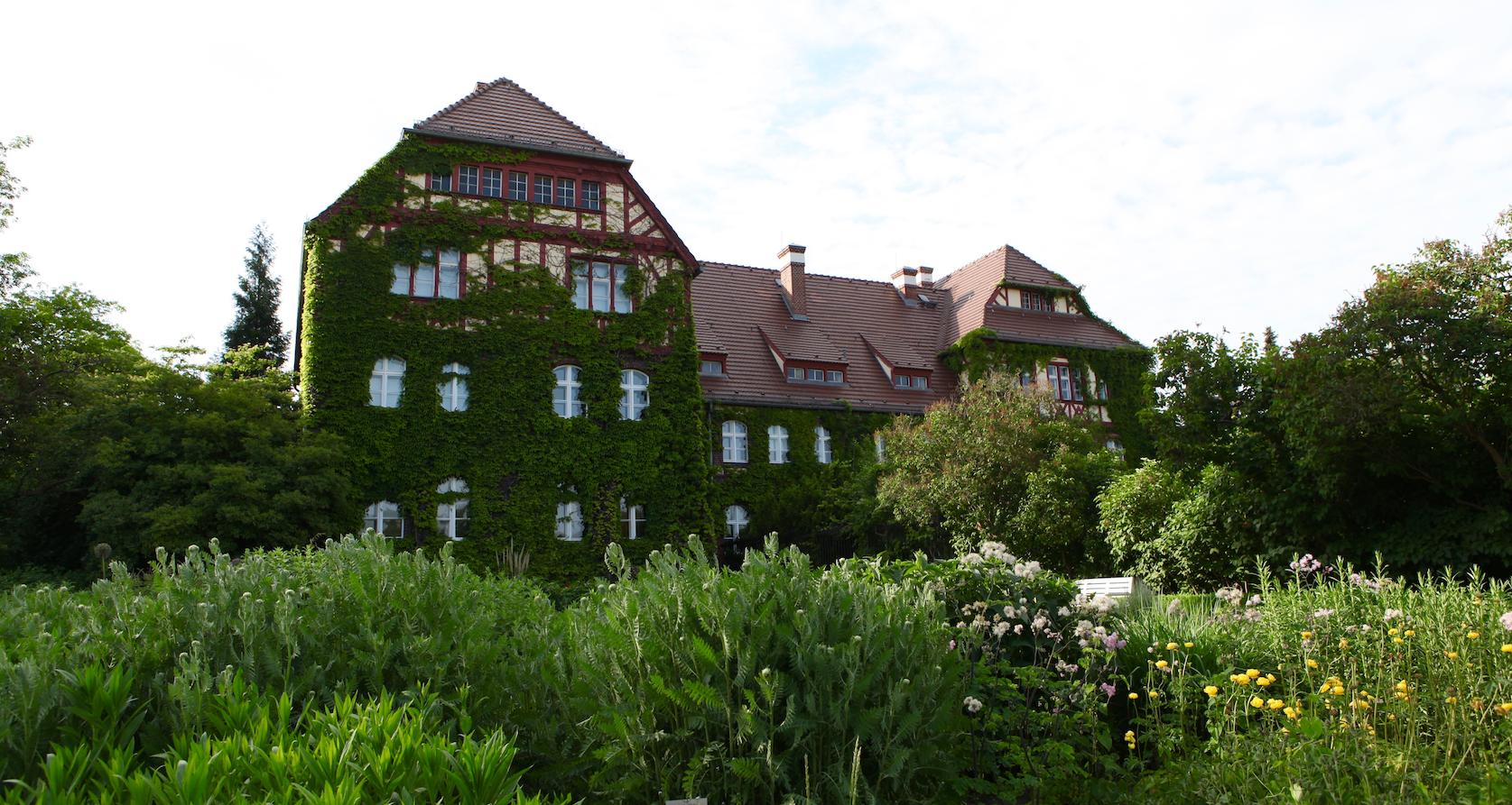 Le jardin botanique des sens à Berlin