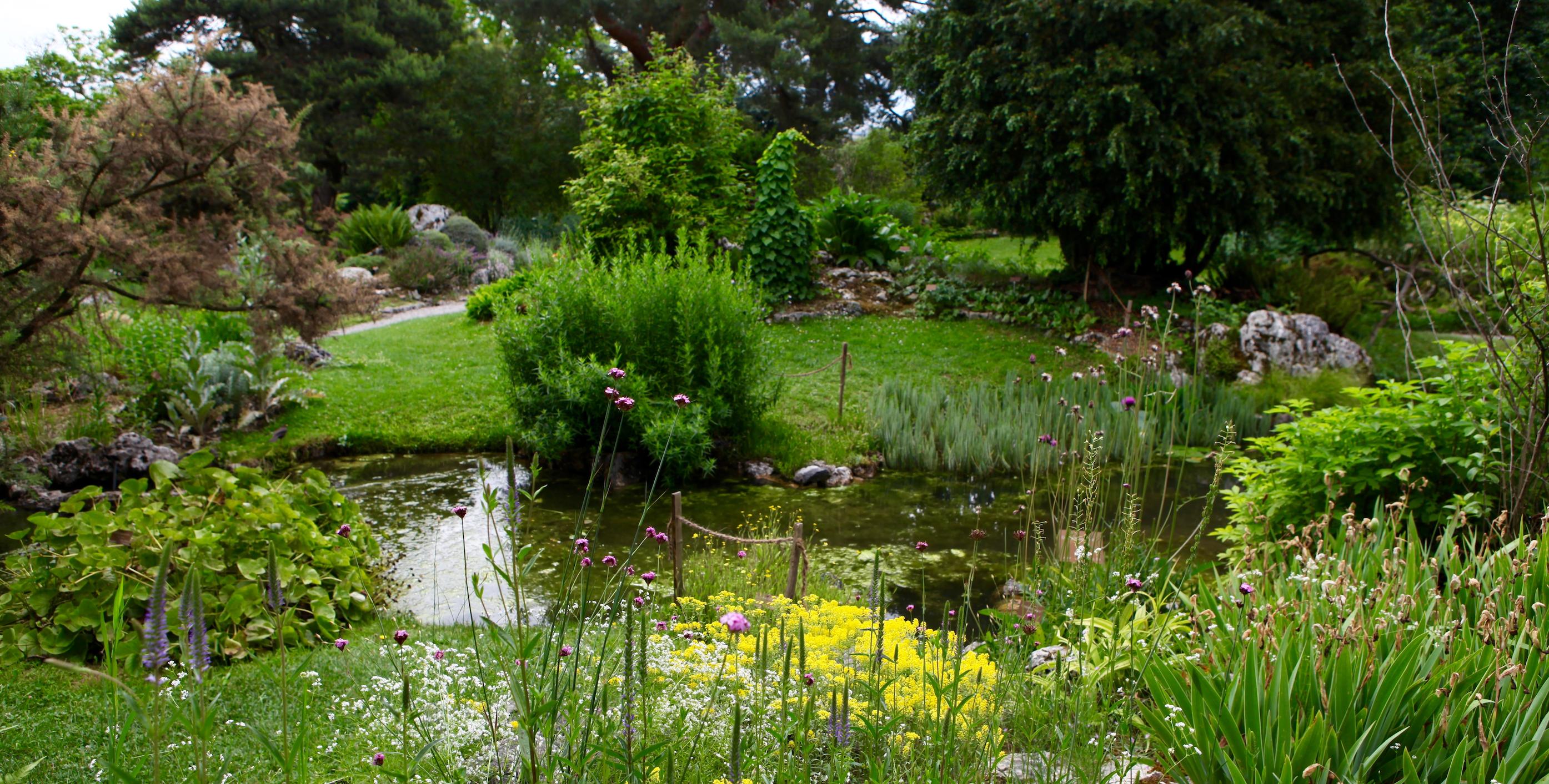 Poisons et potions au jardin botanique de Genève