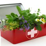 Trousse de soins en médecine naturelle