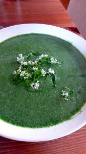 soupe ortie finie