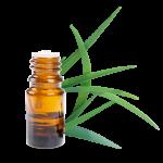 huile essentielle de citronnelle de Java