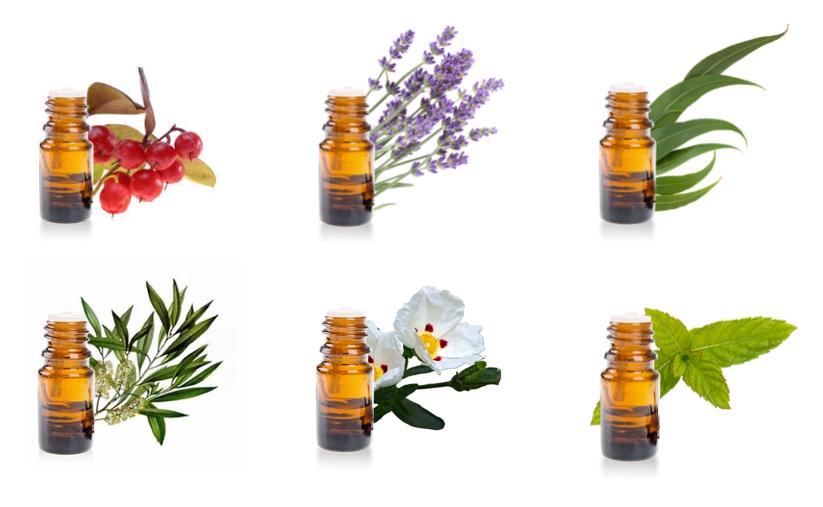 Huiles essentielles pour la trousse aroma de randonnee