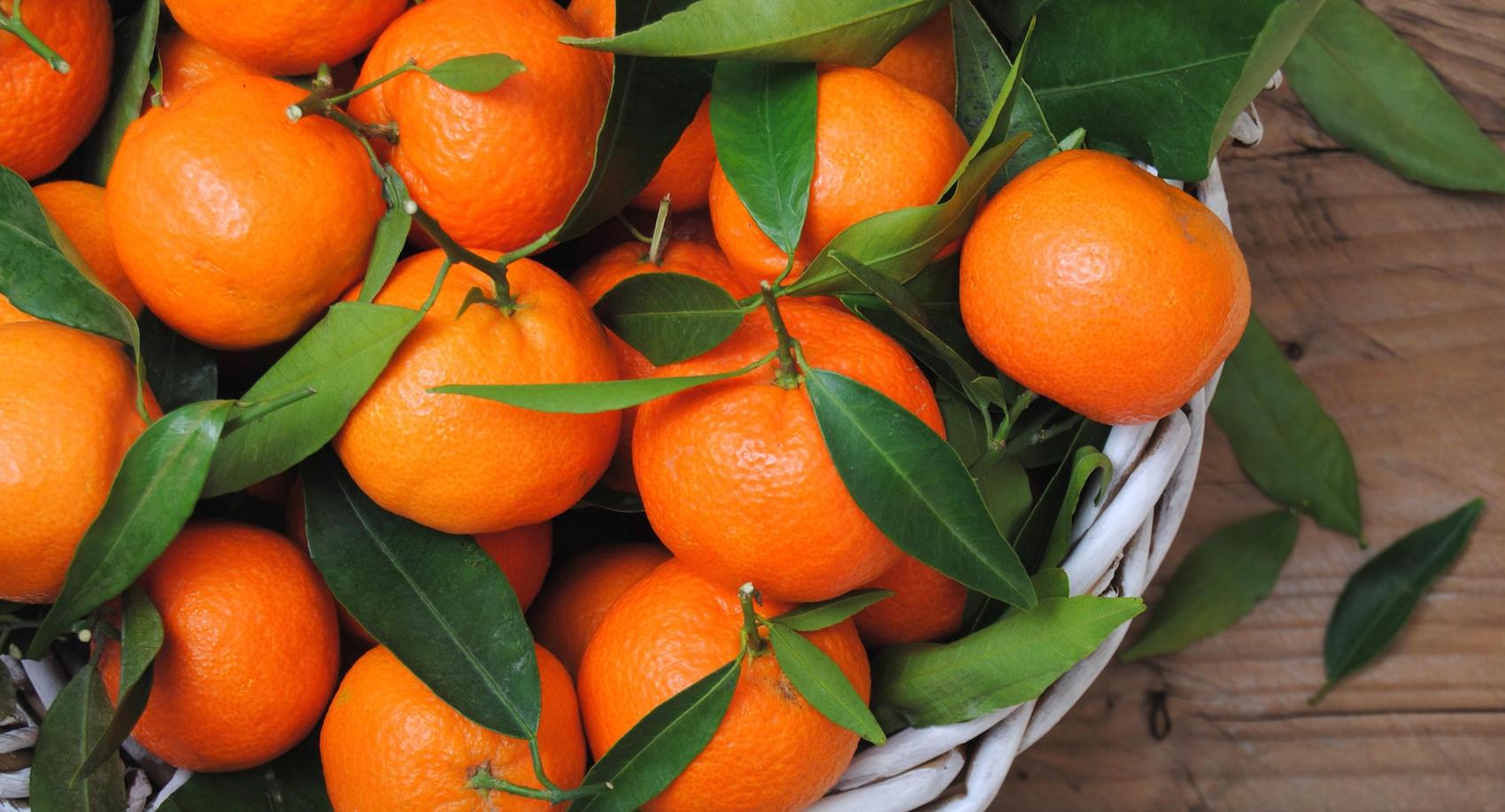 L'huile essentielle de mandarine, pour des rêves apaisants