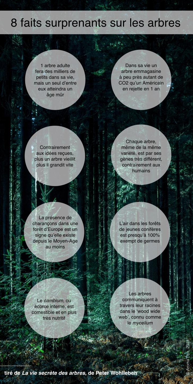 8 faits surprenants sur les arbres - poster