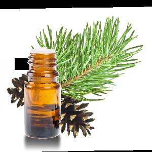 epinette noire huile essentielle