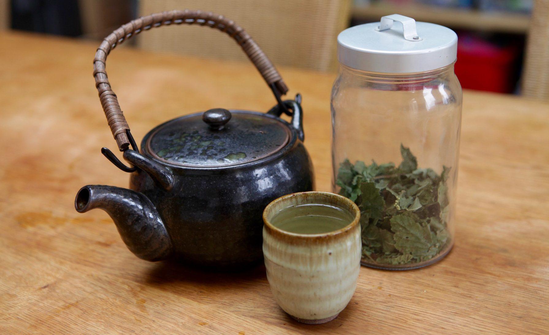 Le thé des centenaires, ou comment rester jeune en buvant de la tisane