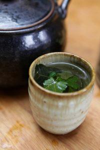 infusion de thé des centenaires
