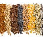graines pour la soupe