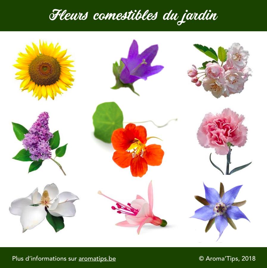 fleurs comestibles de jardin