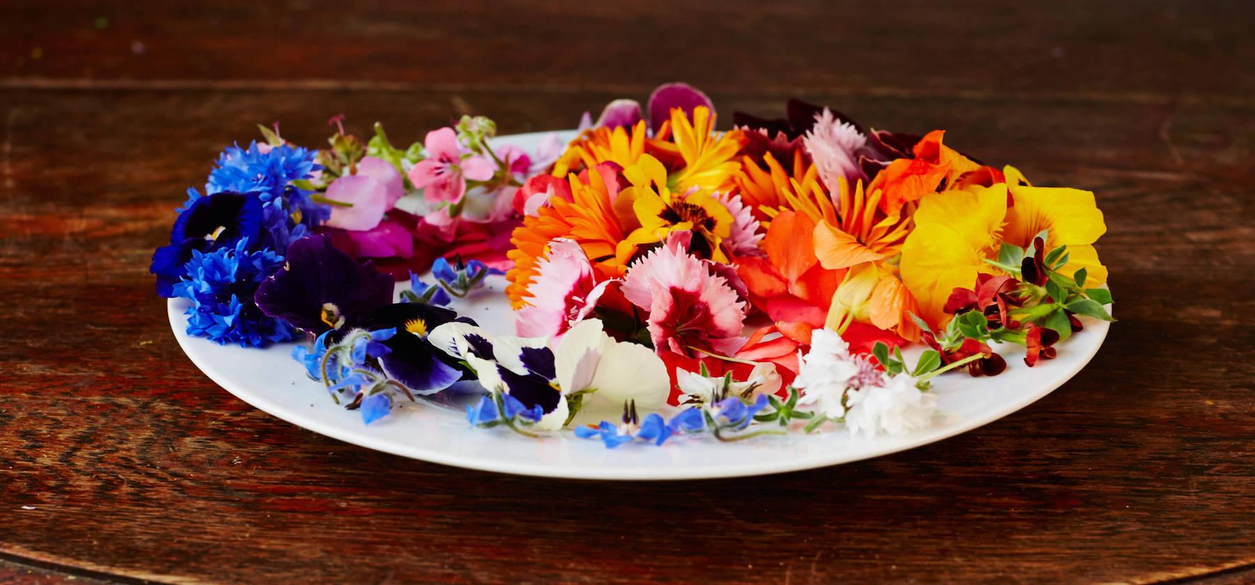Les fleurs comestibles de votre jardin