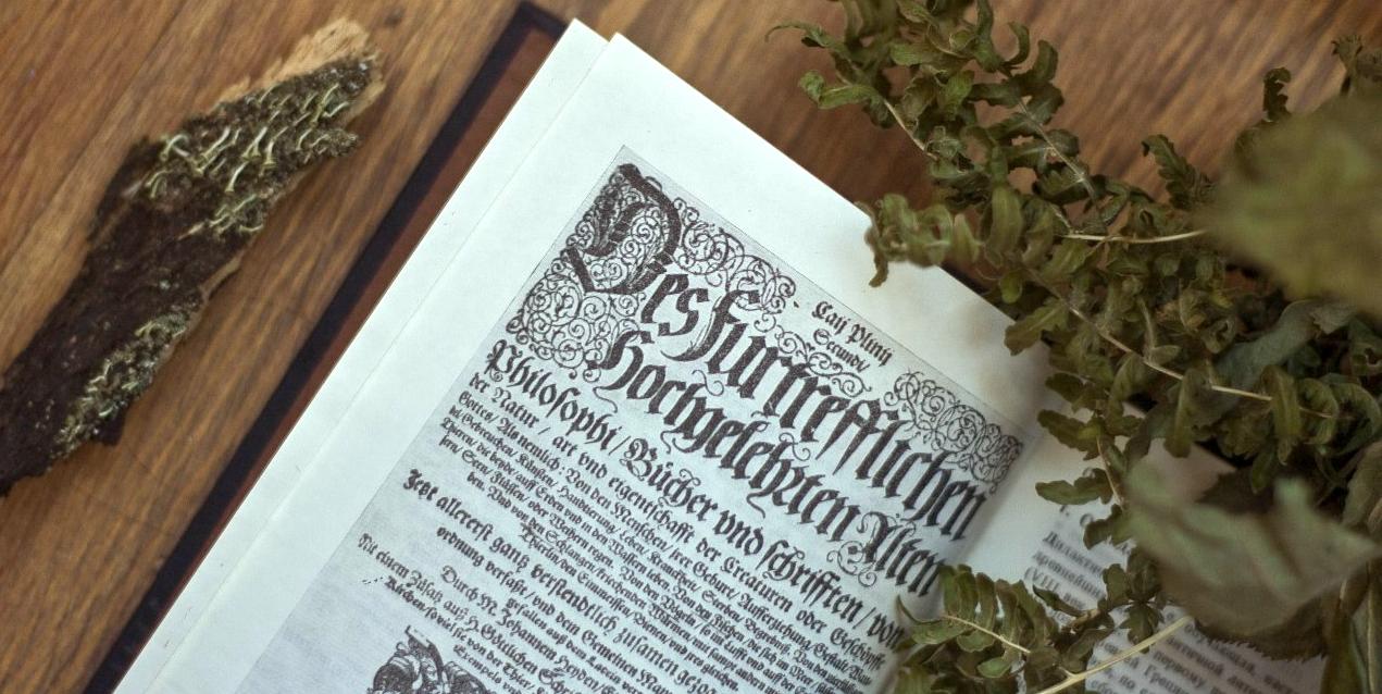 Le grand livre des remèdes interdits : une revue critique