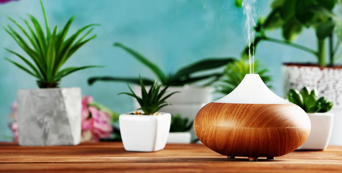 Les 10 huiles «essentielles» pour la maison