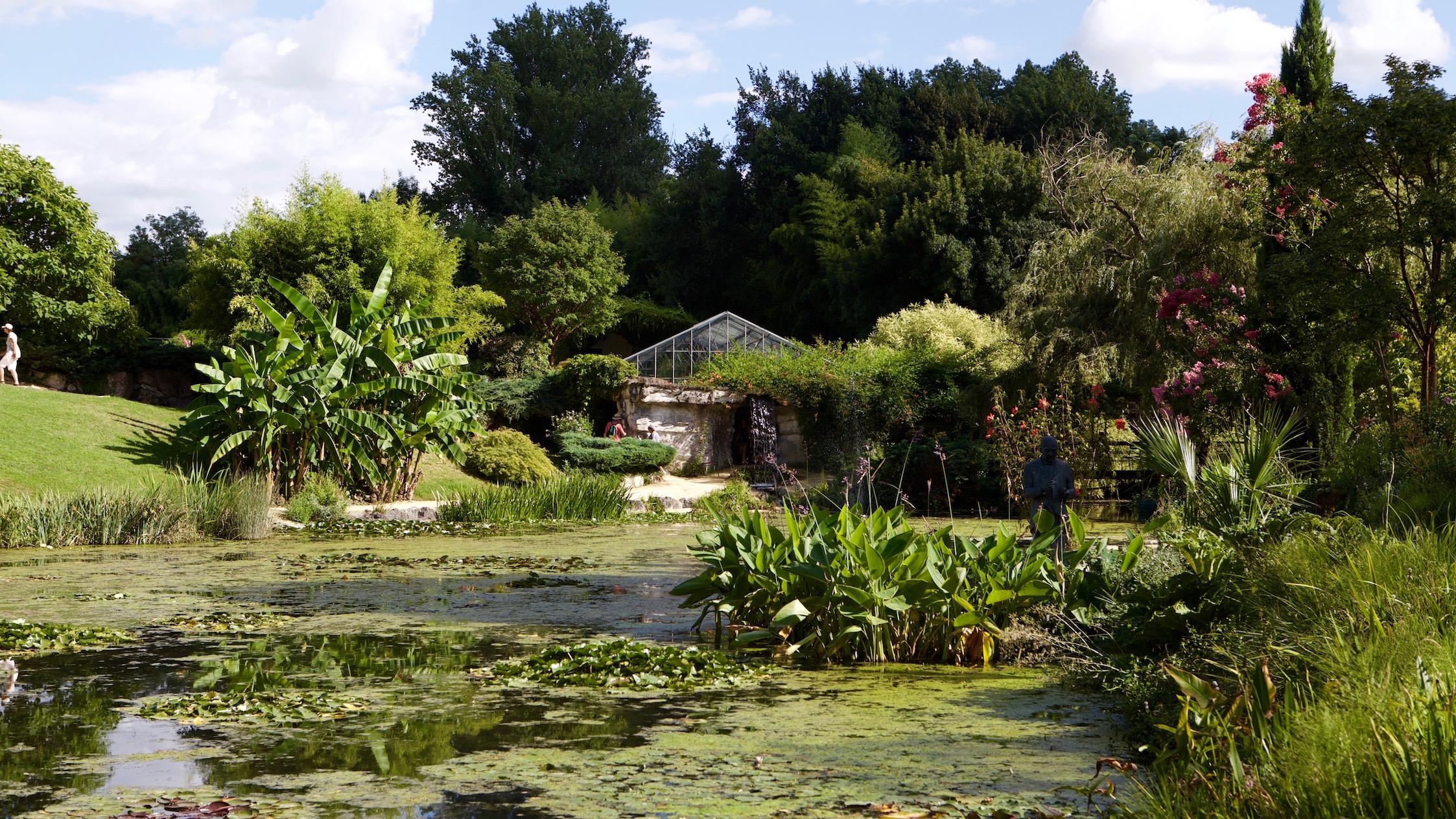 Nymphéas et lotus du jardin de Latour-Marliac à Temple-sur-Lot