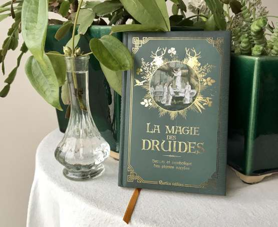 La magie des druides : une revue critique