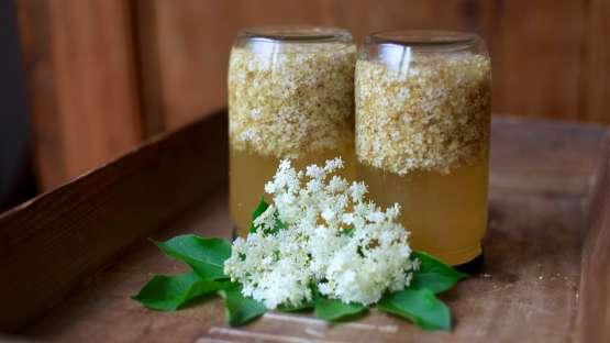 Une liqueur aux fleurs de sureau pour fêter les beaux jours