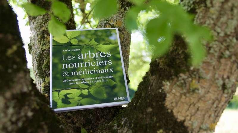 livre sur les arbres en cuisine