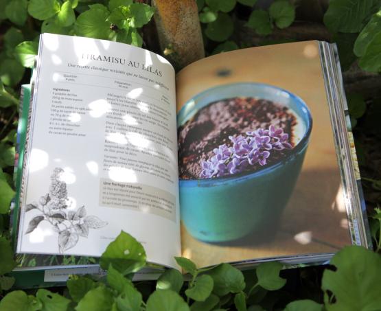 La cuisine des arbres : mon premier livre